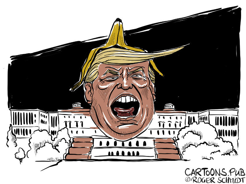 Karikatur, Cartoon: Sturm aufs Capitol © Roger Schmidt